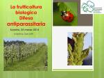 La frutticoltura biologica - difesa - Comunità Montana Valtellina di
