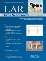 Large Animal Review