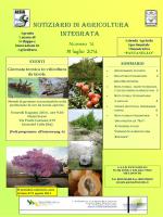 Notiziario ALSIA N° 14 del 31 luglio 2014