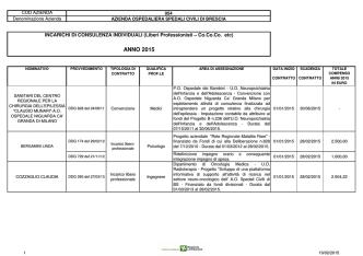 consulenze professionisti2015-concessatiincorsod`annoal15.02.15
