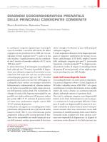 diagnosi ecocardiografica prenatale delle principali cardiopatie