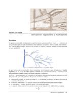 Parte seconda -Derivazione e Regolazione