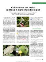 Coltivazione del melo_la difesa in agr
