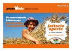 fattoria paradiso - Romagna a Tavola