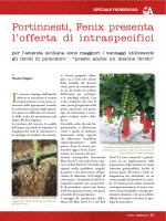 Agrisicilia n. 5/2014 - Fenix presenta i portinnesti intraspecifici