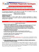 Comunicato Uff nr 53 Calcio a11 del 19 luglio 2014