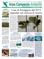 Magazine Arpa Campania Ambiente n. 11 del 15 giugno 2014