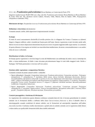25.2.1 Frankenion pulverulentae - prodromo della vegetazione d