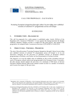 Guidelines of the call for proposals - European Commission