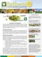 SOIA - DISERBO PRE EM 2014 - Associazione Nazionale Bieticoltori