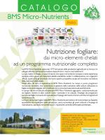 Catalogo Italiaans NF - BMS Micro