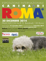 20 dicembre 2014 - Kennel Club Roma