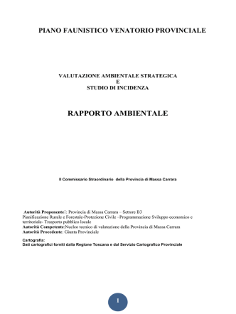 Allegato B - Rapporto Ambientale - Gisnetwork
