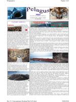 TERZO Pagina 1 di 6 Pelaguspress 20/08/2014 file:///C:/Users