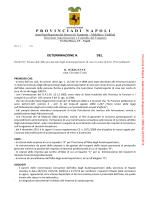 determinazione dirigenziale n. 5656 del 23/07/2014