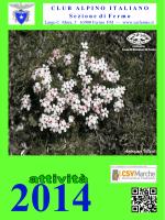 Programma Attività 2014