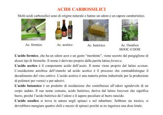 18-Acidi carbossilici e derivati