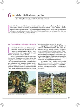 6 I sistemi di allevamento