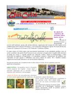 QUI CELLE - Comune di Celle Ligure