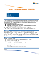 Auditor/Lead Auditor ISO/IEC 20000