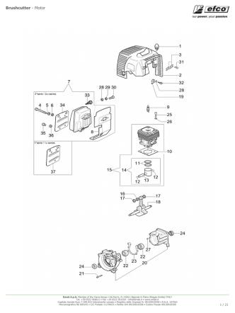 Brushcutter - Motor
