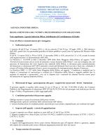 regolamento aggiudicazione (file  340 Kb)