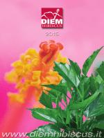 2015 hibiscus