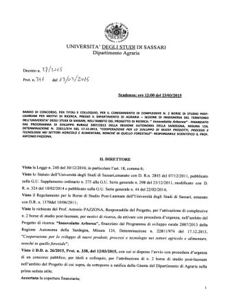 Bando - Università degli Studi di Sassari