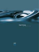 Gapi Group