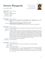 Curriculum Vitae - Università degli Studi di Verona