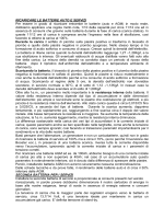 Ricaricare le batterie - Campingclubmestrevenezia.com