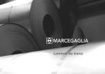 Marcegaglia Steel