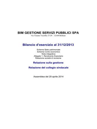 Bilancio al 31/12/2013 - Bim Gestione Servizi Pubblici