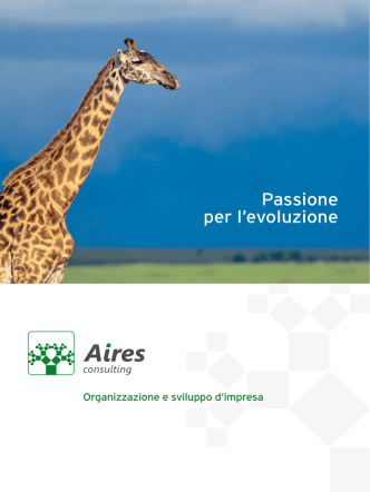 brochure - Aires Consulting