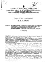 D.D. 448 N. 206 - Provincia Regionale di Messina