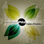 Discovery Pila