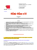 Notis News n°6