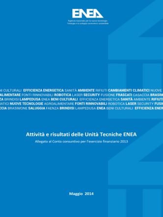 Allegato 3 – Attività e risultati delle Unità Tecniche ENEA