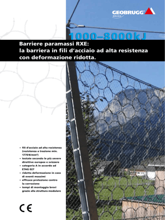 Barriere paramassi RXE (PDF)