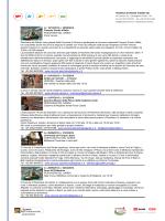 Scarica il volantino in formato PDF