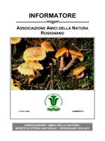 Informatore n°6 - Museo di Storia Naturale di Rosignano