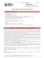 Foglio Informativo FINANZIAMENTO CDP PER GLI INVESTIMENTI