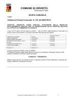 delibera 161 del 30/06/2014