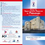 Programma Flebologia
