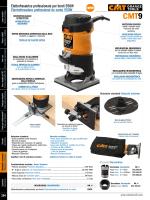 Elettrofresatrice professionale per bordi 550W