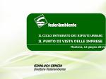 Relazione Gianluca Cencia