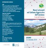 Fexofenadine Online (Antiallergic), Antonio Allegra Pinelli