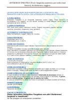 1° MEETING : Monitoraggio delle varietà locali di Leguminose