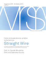 Straight Wire - Davide Mirabella