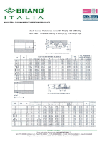 Scheda tecnica - Filettatura a norma ISO 7/1 (R) – ISO 228/1 (Rp
